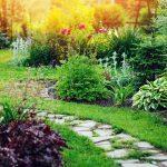 Twój ogród w stylu śródziemnomorskim – rośliny ze sklepu ogrodniczego